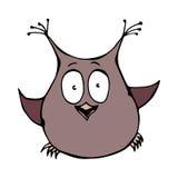 Owl Bird perplexe amusé étonné drôle mignon D'isolement sur une illustration tirée par la main de vecteur de croquis de fond de b Photos libres de droits
