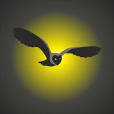 Owl, bird, sova. Owl of a bird, animal of an eagle owl, black color, yellow eyes Royalty Free Stock Photography
