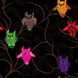 Owl bird vector seamless funny background with cartoon owls (seamless pattern).  Stock Photography