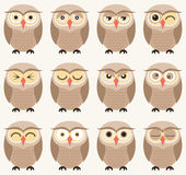 Owl birds pattern Royalty Free Stock Photography