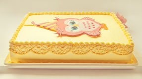 Owl Birthday Cake Royalty-vrije Stock Foto