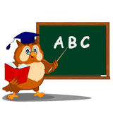 Owl about blackboard Royalty Free Stock Photos