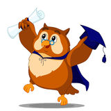 Owl graduate Royalty Free Stock Images