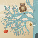 Owl on Blue Tree Stock Photo