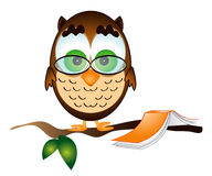 Owl with book. Owl takes a break from reading, while on a tree branch. Illustration with white background for more versatile use Royalty Free Stock Images