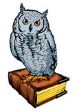 Owl with book Royalty Free Stock Photo