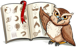 Owl beside the book Stock Photos