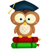 Owl and Book Royalty Free Stock Images