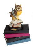 Owl with books. Isolated on white background Royalty Free Stock Image