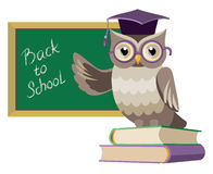Owl with books and blackboard Royalty Free Stock Photo