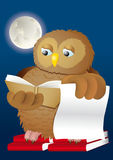 Owl books and moon. Wise owl studying books in the moon shine Royalty Free Stock Photos