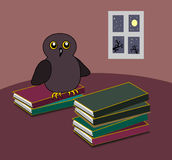 Owl with Books Stock Photography