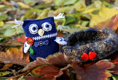 Owl boy gentleman near a love nest. Knitted toy. Stock Images