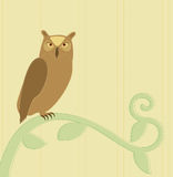 Owl on a branch. Illustration of an Owl standing on a branch Royalty Free Stock Photos