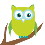 Owl on branch. Cute owl standing on branch stock illustration