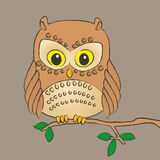 Owl On A Branch Stock Images