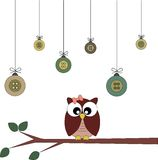 Owl on a branch Stock Photography