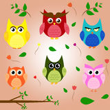 Owl branch cartoon set animal character vector. Design Royalty Free Stock Photo