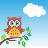 Owl on the branch. Cute colorful owl on the branch blue sky Royalty Free Stock Image