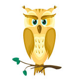 Owl on a Branch. Cute owl with green eyes on a tree branch. Yellow-orange-brown cartoon owl.Vector illustration.Isolated abstract image of a bird Royalty Free Stock Photography