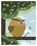Owl in a branch Royalty Free Stock Photo