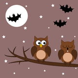 Owl on a branch halloween night Royalty Free Stock Photography