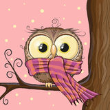Owl on a brunch. Cute Owl with scarf on a brunch Stock Image