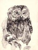 Owl brush drawing sketch. Owl brush monochrome drawing sketch royalty free illustration