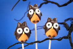 Owl cake pops Royalty Free Stock Photos