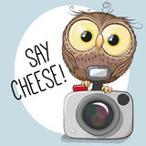 Owl with a camera. Cute cartoon Owl with a camera on a gray background stock illustration