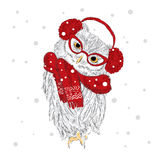 Owl in a cap and scarf were drawn by hand. Owl vector . Bird clothing. Royalty Free Stock Photos