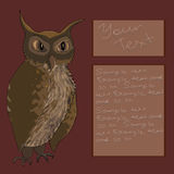 Owl card vector illustration Royalty Free Stock Images