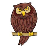 Owl cartoon. Sitting on a branch looking at you vector illustration