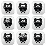 Owl cartoon character  buttons set Stock Photos