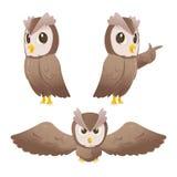 Owl Cartoon Character Pose Set Vector Stock Image