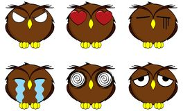 Owl cartoon expressions set Royalty Free Stock Images