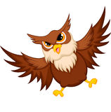 Owl cartoon flying Stock Images