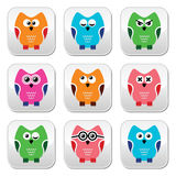Owl cartoon  icons set Royalty Free Stock Photos