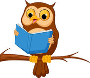 Owl cartoon reading a book Royalty Free Stock Images