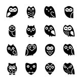 Owl Cartoon Solid Icons. Solid  icons set of owls has a single bird but designed adorably that each icon is different from another, The colorful, bright and Royalty Free Stock Images