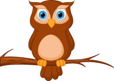 Owl cartoon standing on tree Stock Images