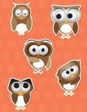 Owl cartoon sticker Stock Photo