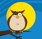 Owl Cartoon On Tree In die Nacht Stockfotografie