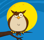 Owl Cartoon On Tree In The Night Stock Photography