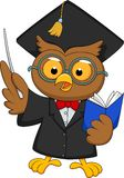 Owl cartoon wearing a graduation uniform giving a presentation Royalty Free Stock Image