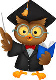 Owl cartoon wearing a graduation uniform giving a presentation Royalty Free Stock Photos