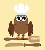 Owl chef Royalty Free Stock Images
