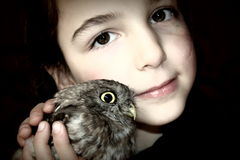 Owl and child. Little girl with a small owl in his hands Royalty Free Stock Photography