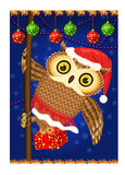 Owl with Christmas gift Royalty Free Stock Photo