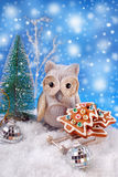 Owl with christmas gingerbread cookies on sledge Stock Photography